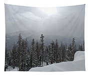 Colorado Winter Peace Tapestry