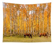 Colorful Autumn High Country Landscape Tapestry