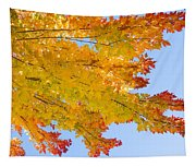 Colorful Autumn Reaching Out Tapestry
