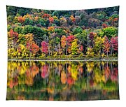 Colorful Autumn Reflections Tapestry