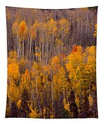Colorful Colorado Autumn Landscape Vertical Image Tapestry