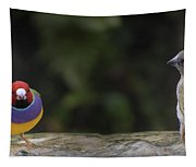 Colorful Guilian Finch And The Plain Bird Tapestry