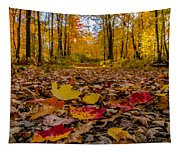 Colorful Path Tapestry