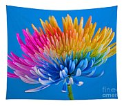 Colorful Precious Tapestry