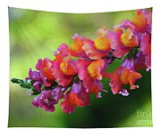 Colorful Snapdragon Tapestry