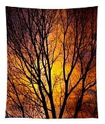 Colorful Tree Silhouettes Tapestry