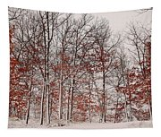 Colorful Winters Day Tapestry