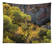 Colors Of Autumn In The Sonoran  Tapestry