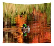 Colors Of The Morning Tapestry