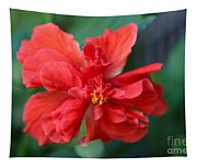 Colors Of The Tropics Hibiscus Tapestry