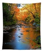 Colors On A Stream Tapestry