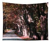 Colt State Park Bristol Rhode Island Tapestry
