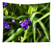 Columbine Flower 2 Tapestry