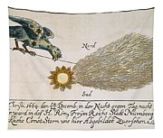 Comet, 1664 Tapestry