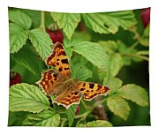 Comma Tapestry