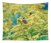 Common Buckeye Butterfly Hides In The Goldenrod Tapestry