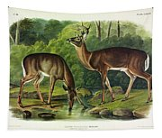 Common Deer Tapestry