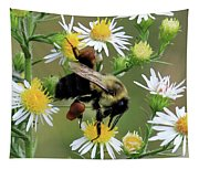 Common Eastern Bumblebee  Tapestry