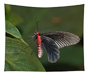 Common Rose Butterfly Tapestry
