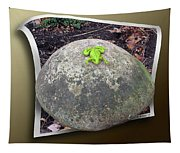 Concrete Toad Stool Tapestry