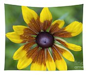 Coneflower - New England Wild Flower Tapestry