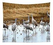 Congregating Sandhill Cranes Tapestry