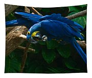Contorted Parrots Tapestry