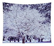 Cool Sunset Essence Of Winter Tapestry