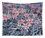 Cool Sunset Field Of Tiger Lillies Tapestry