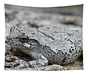 Cope's Gray Tree Frog #5 Tapestry
