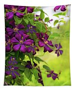 Copious Clematis Tapestry