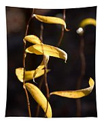 Corkscrew Willow Tapestry