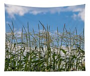 Corn Tassels In The Sky Tapestry