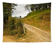 Costa Rica Path Tapestry