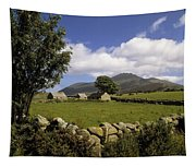 Cottages On A Farm Near The Mourne Tapestry