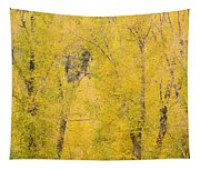 Cottonwood Autumn Colors Tapestry