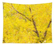 Cottonwood Colors  Tapestry