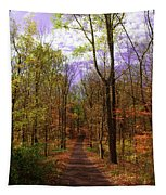 Country Road In Autumn Tapestry
