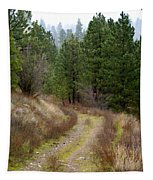 Country Road Take Me Home Tapestry
