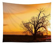Country Sunrise Tapestry