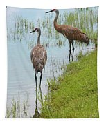 Couple Of Sandhills By Pond Tapestry