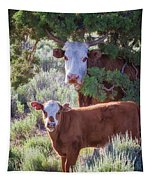 Cow And Calf Tapestry