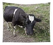 Cow Tow Tapestry