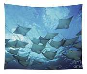Cownose Rays Tapestry