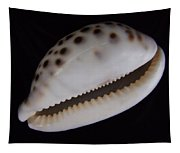 Cowry Shell Tapestry