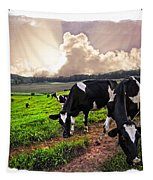 Cows At Sunset Bordered Tapestry