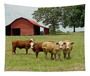 Cows8954 Tapestry