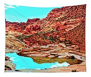 Coyote Butte Tapestry