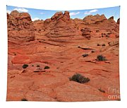 Coyote Buttes Pink Landscape Tapestry