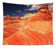 Coyote Buttes Sandstone Towers Tapestry